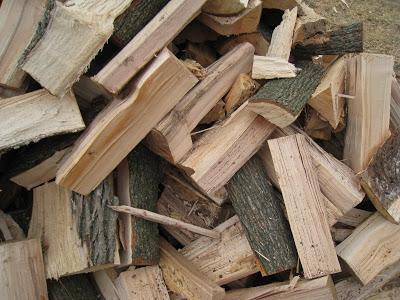 Wisconsin Firewood Types