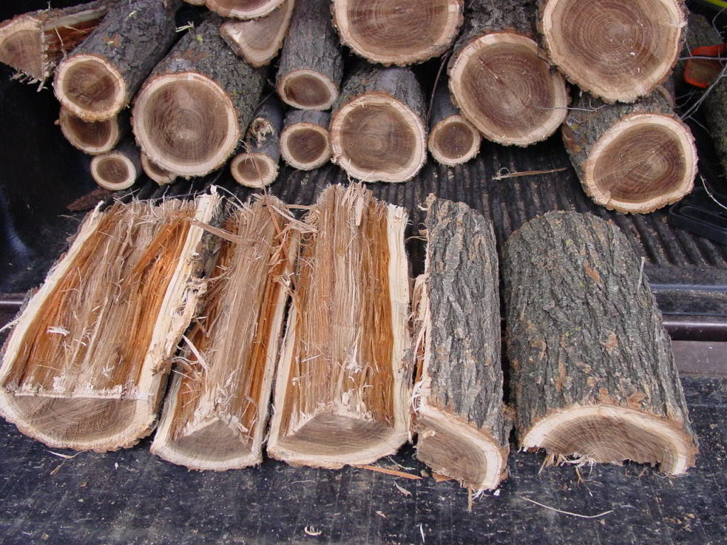 Hardwood Firewood Ozaukee County - Call today to order a cord!